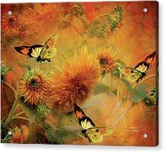Sunflowers Acrylic Print by Carol Cavalaris