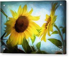 Sunflowers Duet Acrylic Print
