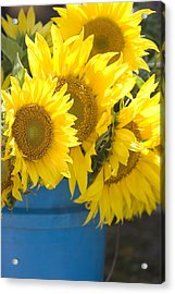 Sunflowers For Sale Acrylic Print