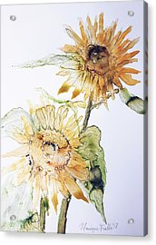 Sunflowers II Uncropped Acrylic Print