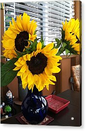 Sunflowers Acrylic Print by Molly Williams