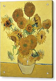 Sunflowers Acrylic Print by Vincent Van Gogh