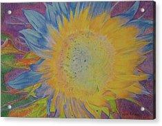 Sunglow Acrylic Print