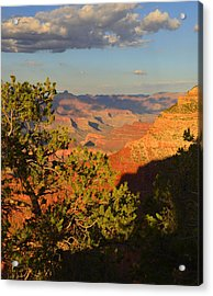 Acrylic Print featuring the photograph Sunkissed Afternoon by Stephen  Vecchiotti