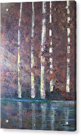 Sunlight And Birch Acrylic Print