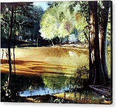 Sunlight On Village Creek Acrylic Print