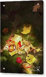 Acrylic Print featuring the digital art Sunlit Autumn Leaves On Dark Moss Ap by Dan Carmichael