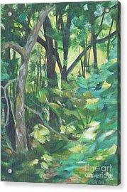 Sunlit Backyard Acrylic Print