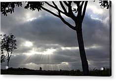 Sunlit Gray Clouds At Otay Ranch Acrylic Print by Karen J Shine