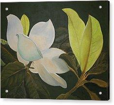Sunlit Magnolia Acrylic Print