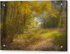 Sunlit Meadow In Borderland Acrylic Print