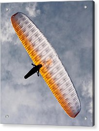 Sunlit Paraglider Acrylic Print
