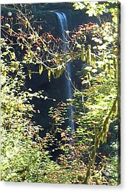 Acrylic Print featuring the photograph Sunlite Silver Falls by Thomas J Herring