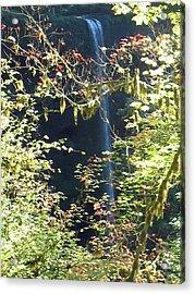 Sunlite Silver Falls Acrylic Print