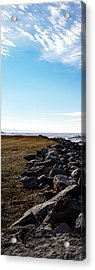 Acrylic Print featuring the photograph Sunny Afternoon-t1 by Onyonet  Photo Studios