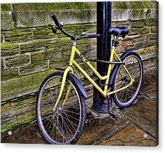 Sunny Cycle Acrylic Print by JAMART Photography