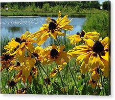 Acrylic Print featuring the photograph Sunny Days by Christie Minalga