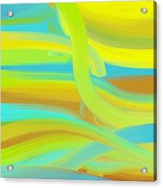 Sunny Dunes Acrylic Print by Frank Tschakert