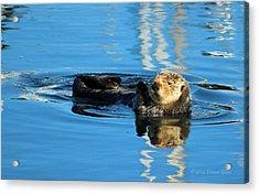 Sunny Faced Sea Otter Acrylic Print