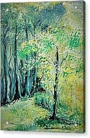 Sunny Forest Acrylic Print