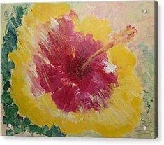 Sunny Hibiscus Acrylic Print by Adrian Simpson