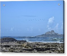 Acrylic Print featuring the photograph Sunny Morning At Roads End by Peggy Hughes