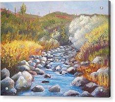 Sunny Morning On Cave Creek Acrylic Print by Michael McGrath
