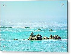 Sunny Pacific Ocean Oregon Coast Acrylic Print