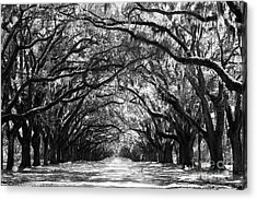 Sunny Southern Day - Black And White Acrylic Print by Carol Groenen