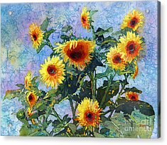 Acrylic Print featuring the painting Sunny Sundance by Hailey E Herrera