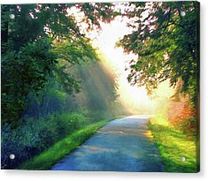 Sunny Trail Acrylic Print by Cedric Hampton