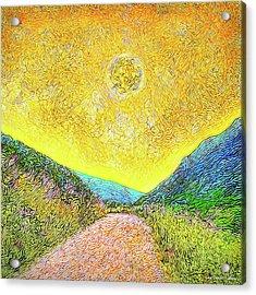 Sunny Trail - Marin California Acrylic Print