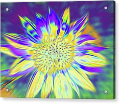 Sunpopped Acrylic Print