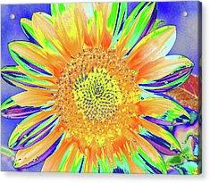Sunrazzler Acrylic Print