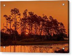 Sunrise Along A Tree Line Acrylic Print