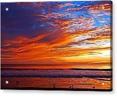 Sunrise And Seagulls Acrylic Print
