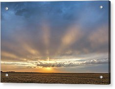 Acrylic Print featuring the photograph Sunrise And Wheat 03 by Rob Graham