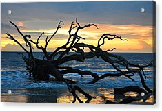 Sunrise At Driftwood Beach 1.1 Acrylic Print