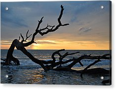 Sunrise At Driftwood Beach 1.2 Acrylic Print