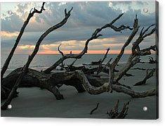 Sunrise At Driftwood Beach 4.1 Acrylic Print