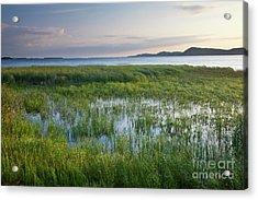 Sunrise At Sandbar  Acrylic Print by Susan Cole Kelly