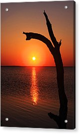 Sunrise At The Cape Acrylic Print by Marcus Adkins