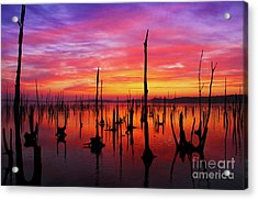 Sunrise Awaits Acrylic Print