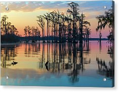 Acrylic Print featuring the photograph Sunrise, Bald Cypress Of Nc  by Cindy Lark Hartman