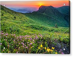 Sunrise Behind Goat Wall Acrylic Print by Evgeni Dinev