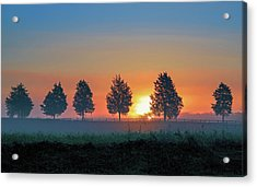 Acrylic Print featuring the photograph Sunrise Behind The Cedars by Lori Coleman