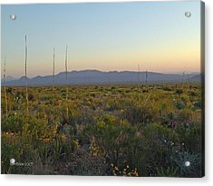 Acrylic Print featuring the photograph Sunrise Christmas Mountains by Kerry Beverly