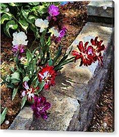 Sunrise Garden Acrylic Print by RC deWinter