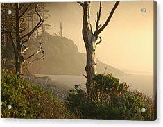 Sunrise Haze Acrylic Print by Lori Mellen-Pagliaro