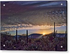 Acrylic Print featuring the photograph Sunrise In Sabino Canyon Remix by Dan McManus
